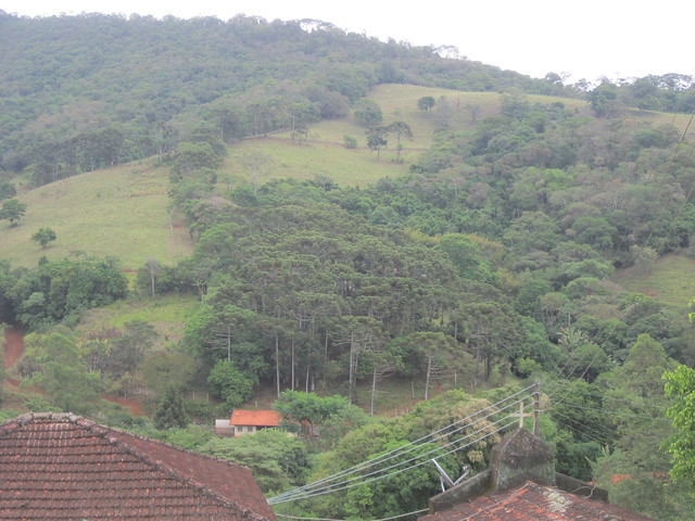 View of the new landscape in the hilly area around Extrema, after the reforestation of thousands of hectares in three basins in this municipality in southeastern Brazil, where the local government has fomented the process of recovery by paying landowners for environmental services. The priority is to restore the forests at the headwaters of the rivers and on hilltops and protect them with cattle fences. Credit: Mario Osava/IPS